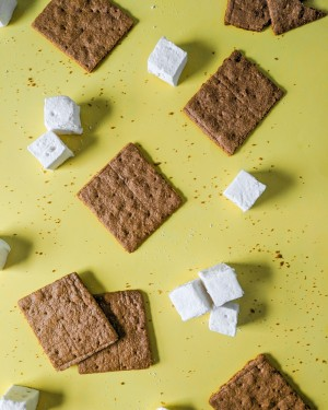 marshmallows and graham crackers for awesome smores by emily hanka